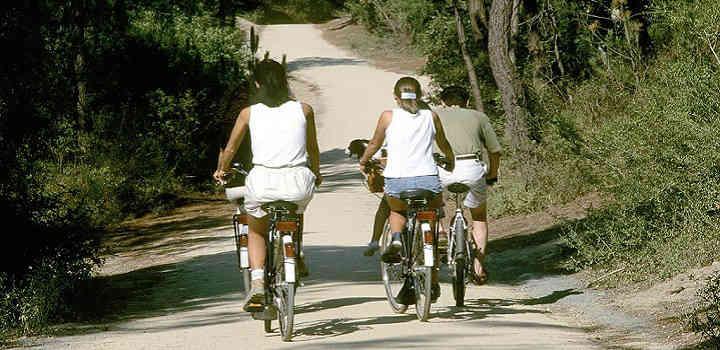 Location vacances gîte avec piscine intérieure en Vendée: randonnées à vélo autour de l'hébergement