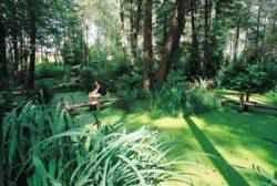 Location gîte Vendée piscine près de Fontenay le comte et du sud Vendée, olfacties, calme et détente